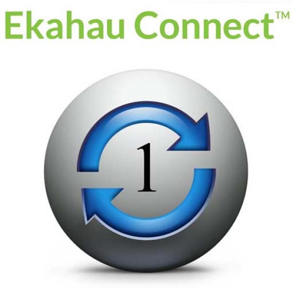 Подписка Ekahau Connect на 1 год - контракт поддержки для